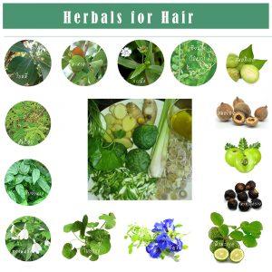 Herbal for Hair